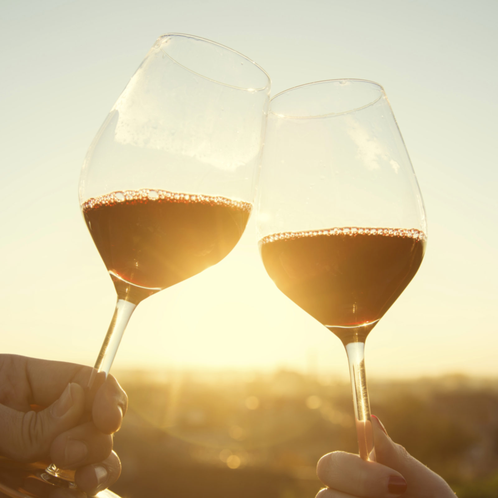 Bold Red Wine Cheers in Vineyard at Sunset