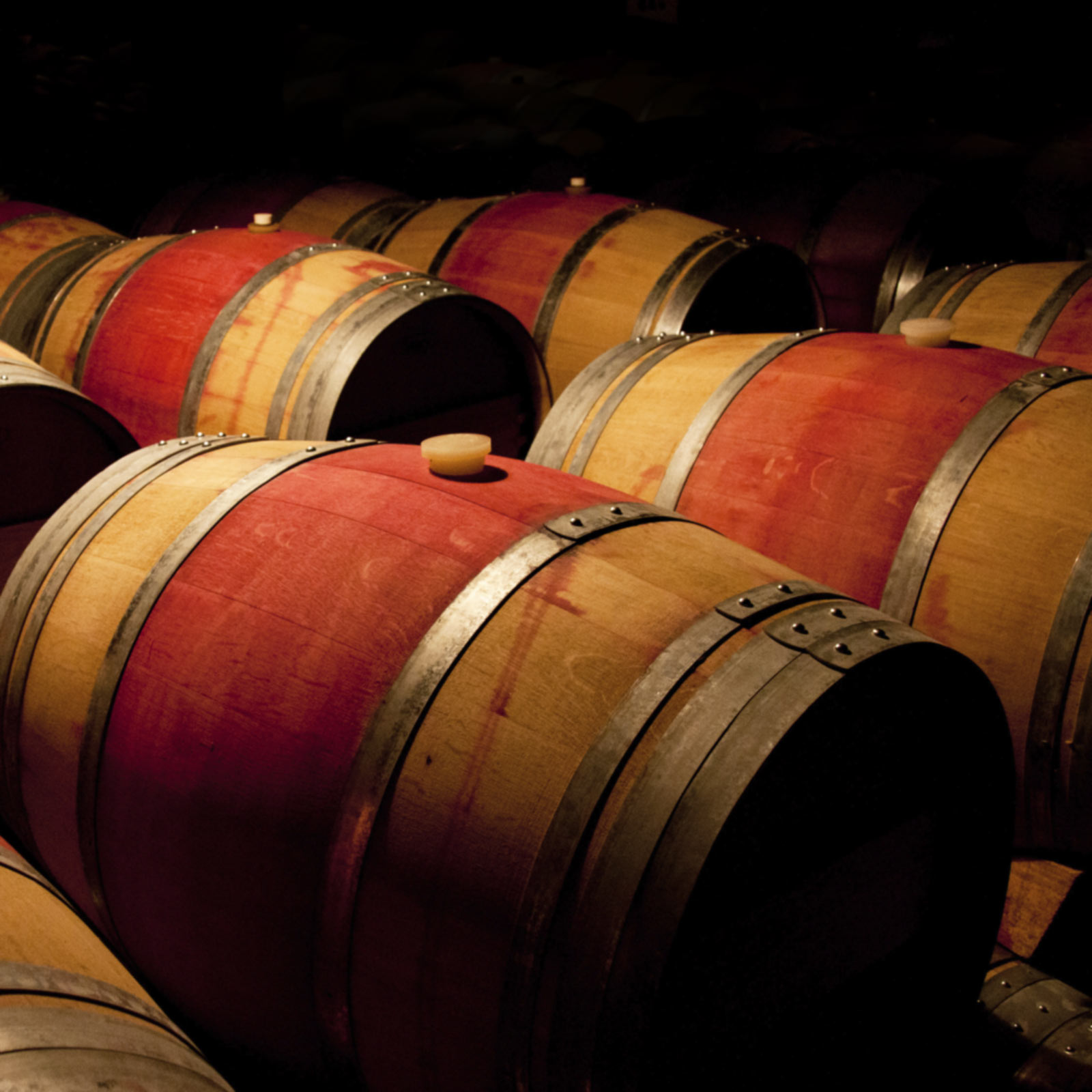 Overlooking wine barrels in a small barrel room or cellar